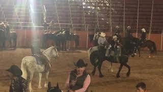 Caballos Bailadores en Jalisco Feria Arandas Monturas de Primera