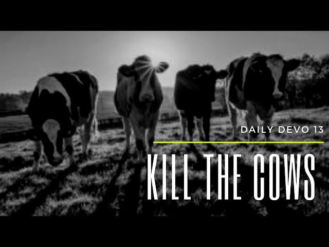 Kill The Cows (Daily Devo 13)