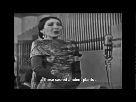 Maria Callas: Casta Diva (w.translation)