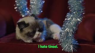 Why Does Grumpy Cat Hate The Holidays?