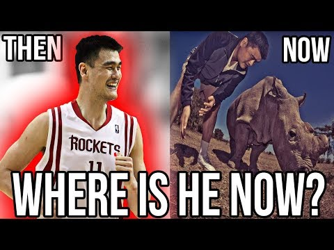 Where Are They  Now? YAO MING