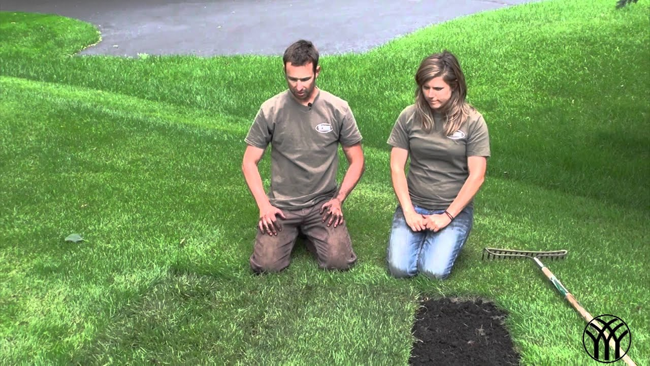 Beautiful How To Install Sod
