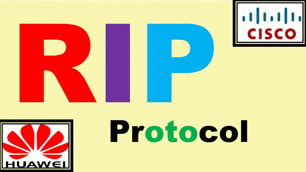 Rip Protocol Pdf