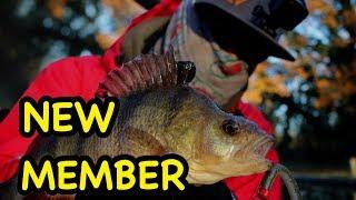 New Member Canal Fishing BFS for Zander & Perch - FPAUK