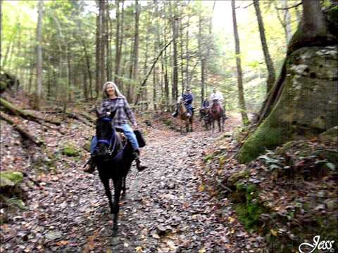 Big South Fork - Station Camp Trail Riding - October 2014