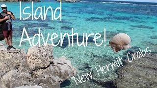 EXPLORING ROTTNEST ISLAND AND MY NEW PETS! | Vlog 161