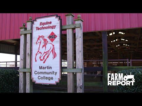 Farm Report: Martin Community College Equine Program | Training Part 2