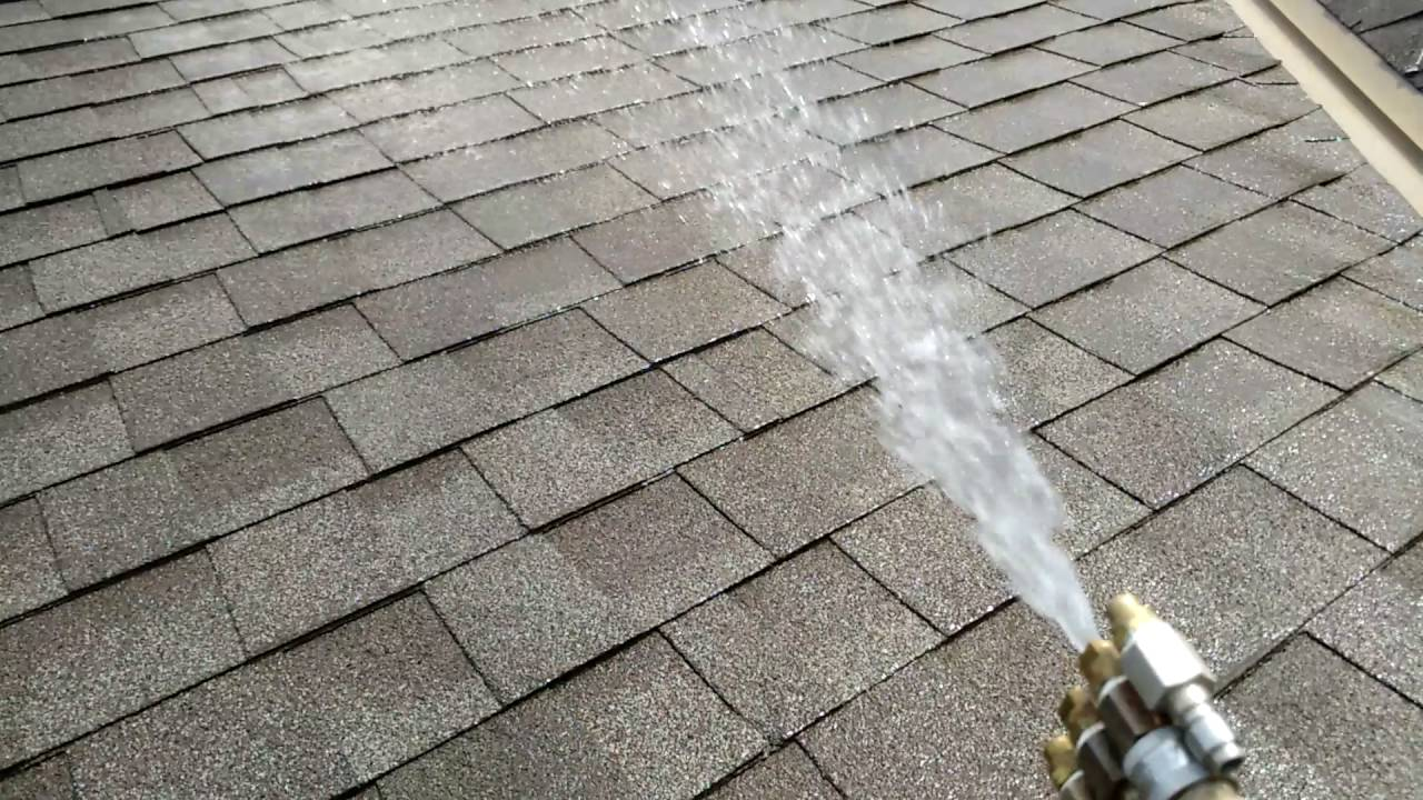 How To Clean Roof Algae