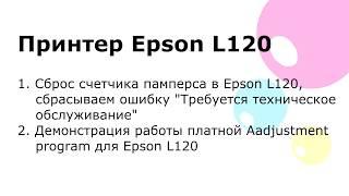 Сброс памперса. Epson L120 Adjustment program