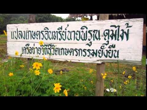 แนะนำ ภูมิปัญญาเกษตรธรรมชาติ