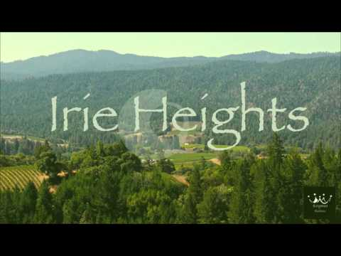 Reggae/Trap Fusion Instrumental: Irie Heights