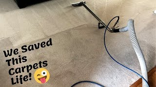 Cleaning a 20 year old Carpet