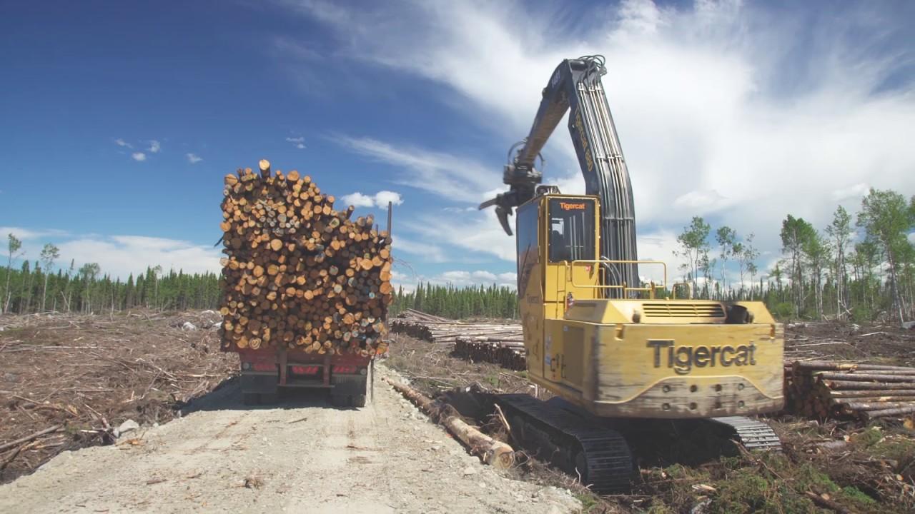 chargeuse et camion de transport de bois en longueur youtube
