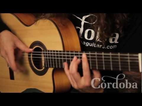 Hybrid Heavy Metal and Flamenco Techniques