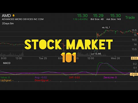 How To Start Trading Stocks 101 | Penny Stock Investor