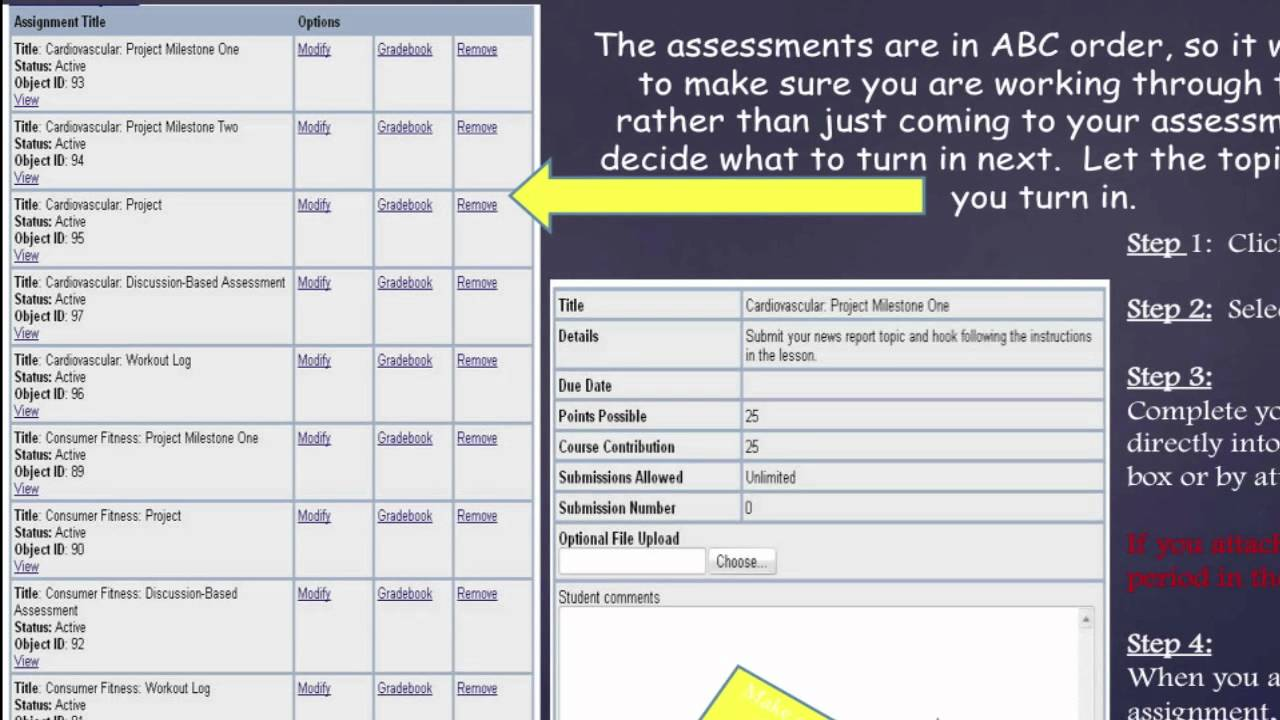 2 05 history assignment flvs