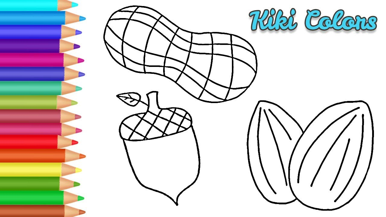 How To Color Nuts Drawing And Coloring Videos Youtube