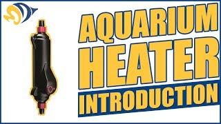 Aquarium Heater Introduction