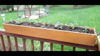 Build Deck Railing Planter Boxes