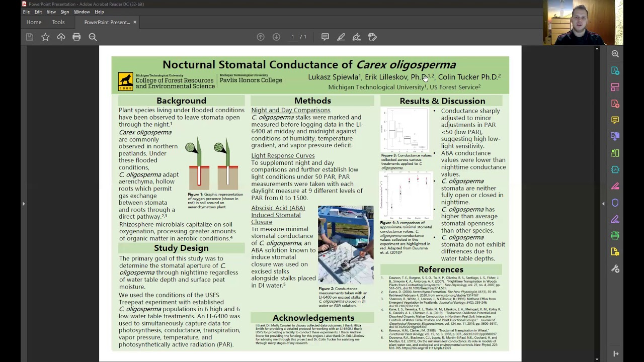 Preview image for Nocturnal Stomatal Conductance of Carex Oligosperma video