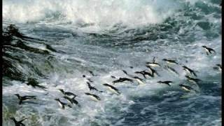 Aurosonic feat Marcie - Ocean Wave (Sobersoul Remix) DnB version