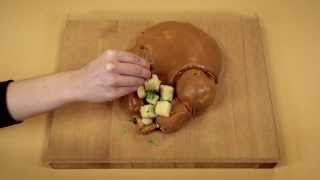 Repeat youtube video Turkey Cake Stop Motion Animation