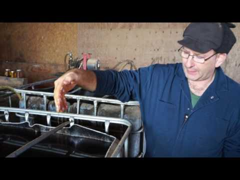 Hemp Fuel Farmer | Glenn Rodes | Feb 24 2016