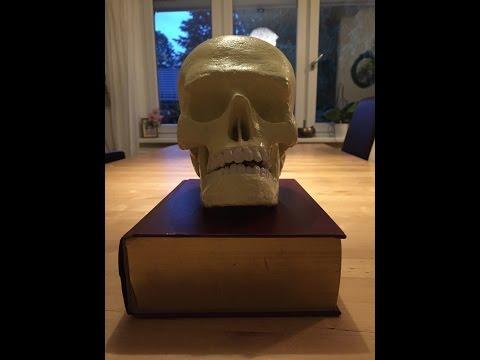 Paper Mache Skull Part 2 Lower Jaw