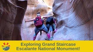 Exploring Grand Staircase Escalante National Monument!
