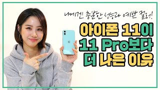 아이폰 11이 11 Pro보다 더 나은 이유?! 📱아이폰 증정 구독자 이벤트