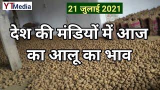 21 जुलाई 2021/ देश की मंडियों में आज का आलू का भाव/ Potato market price today in india