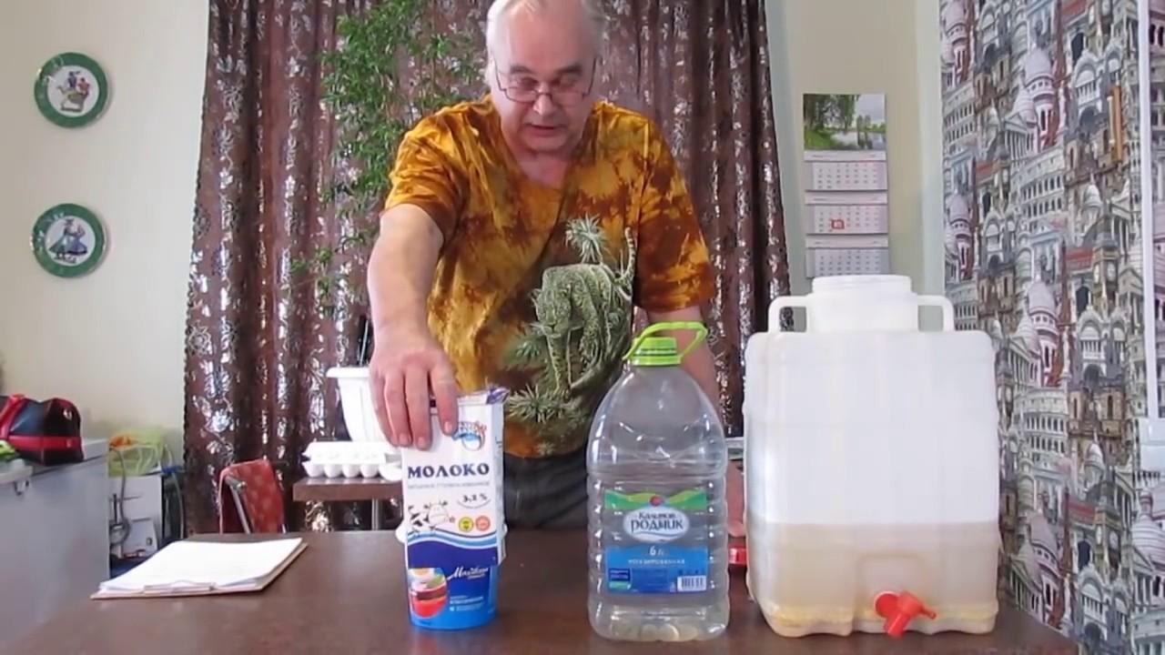брага рецепт на молоке