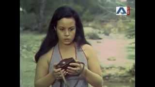 Macera Yolu (1974)