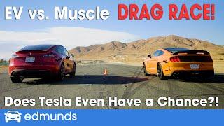Drag Race! Tesla Model Y vs. Shelby GT500 | EV vs. Muscle | 0-60 Performance & More