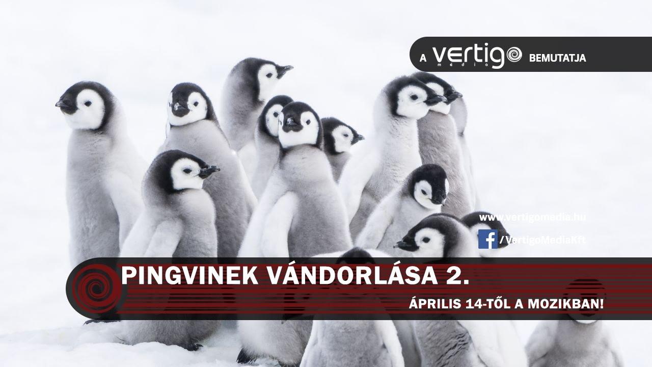 Pingvinek vándorlása 2. (korhatár nélkül) szinkronos előzetes
