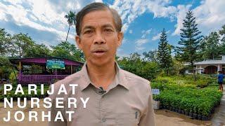 Plant Nursery Tour | PARIJAT NURSERY JORHAT | Assamese Indigenous Plants Guide | First Video