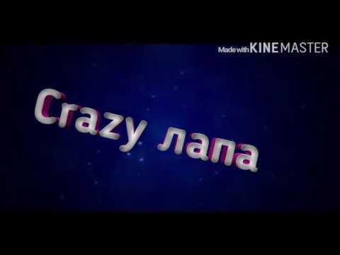 Интро для канала Crazy лапа
