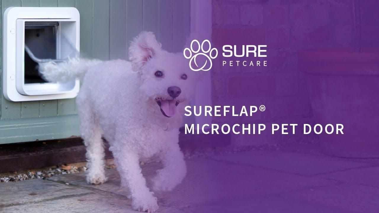 The Sureflap Microchip Pet Door Youtube