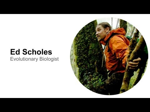 Ed Scholes: Evolutionary Biologist
