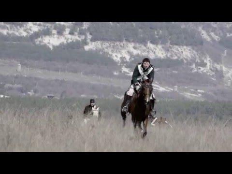 скачки на лошадях игры