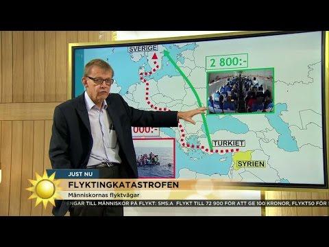 """Hans Rosling: """"Man kan ju ta dit en färja"""" - Nyhetsmorgon (TV4)"""