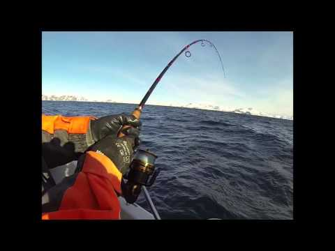 WFT Tackle in Norwegen