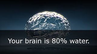 33 Interesting facts about the human brain!