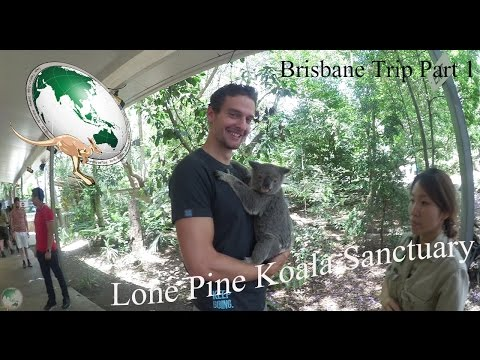 Brisbane Trip Part 1/ Lone Pine Koala Sanctuary/ Work and Travel Australien Vlog #20