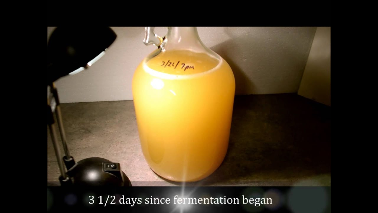 how to make homemade hard cider
