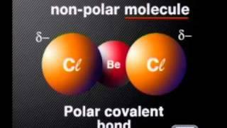 Chemistry - Chemical Bonding: Introducing the VSEPR Model
