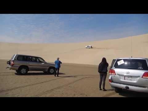 Desert Safari Sea Line - Sun Dunes Qatar