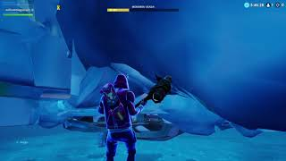 Fortnite bug to see what's behind the polar beak eye