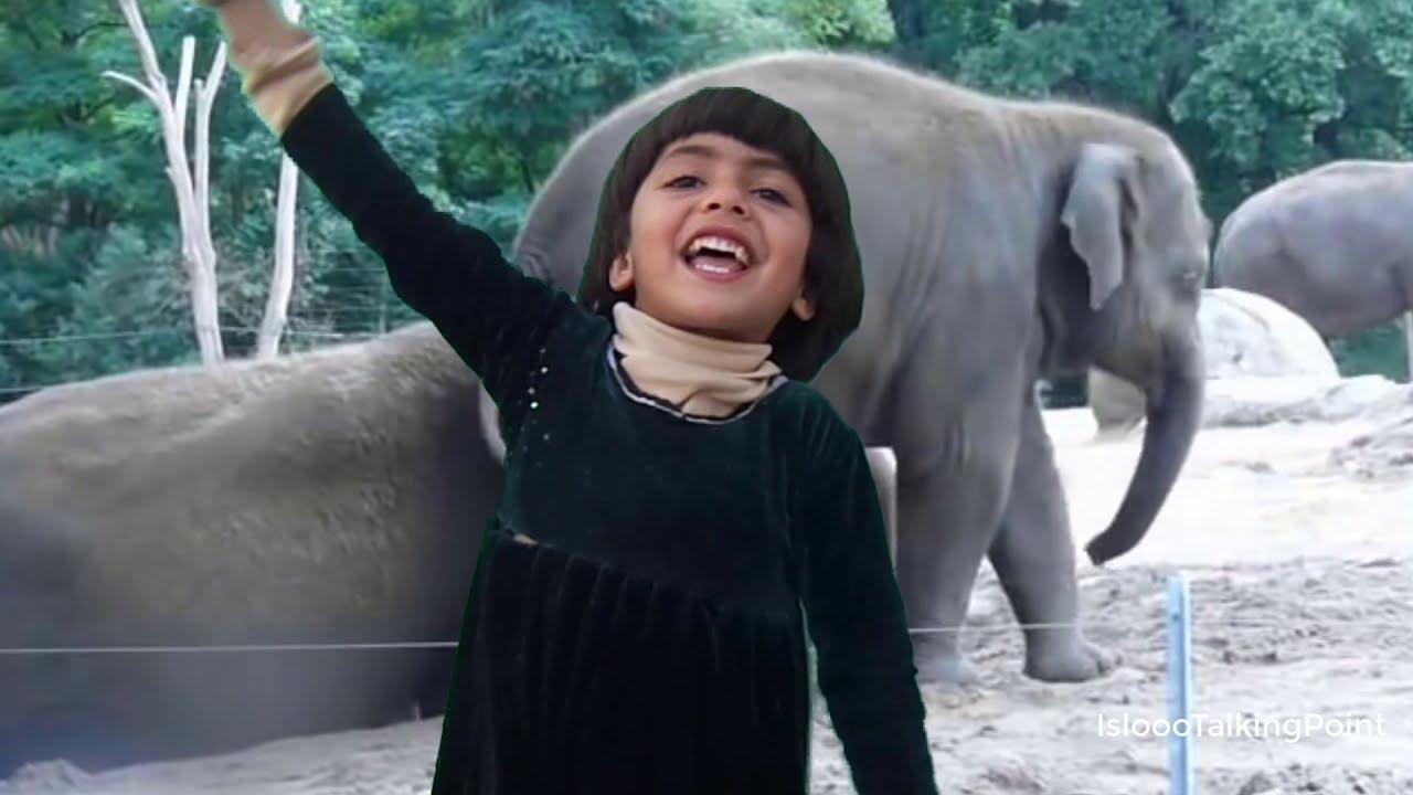 Download Dekho Bacho Hathi Aya   Urdu Poem   Play Group   Urdu Nursery Rhyme