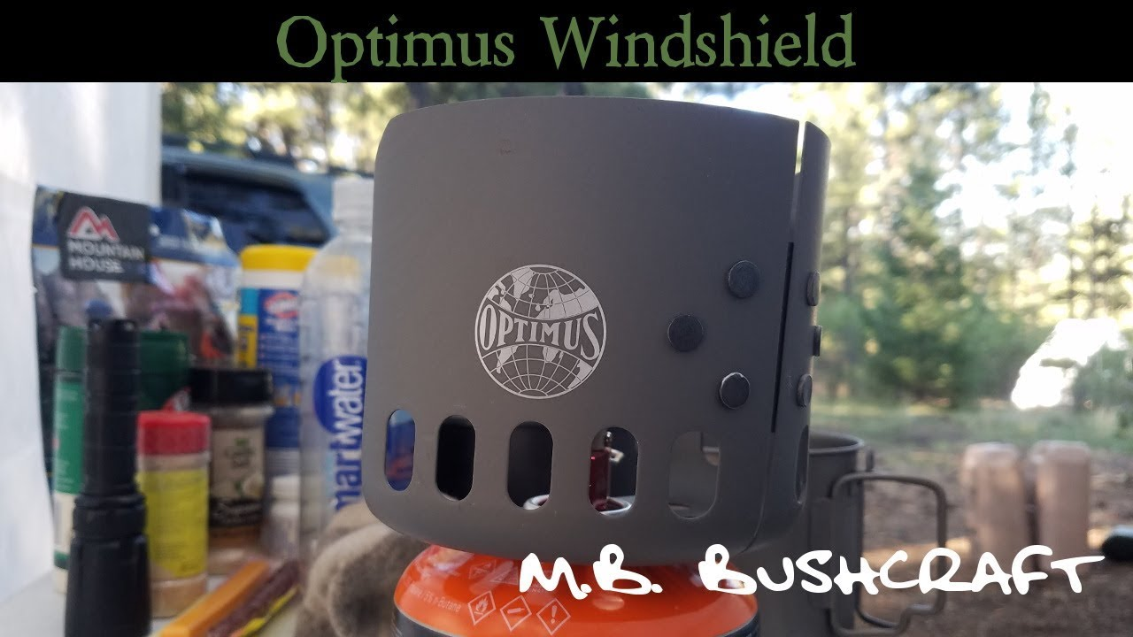 Optimus Windshield